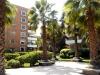 Parque del condominio