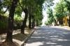 Calle con acceso a la propiedad